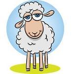 مسأله ریاضی: خرید و فروش گوسفندان